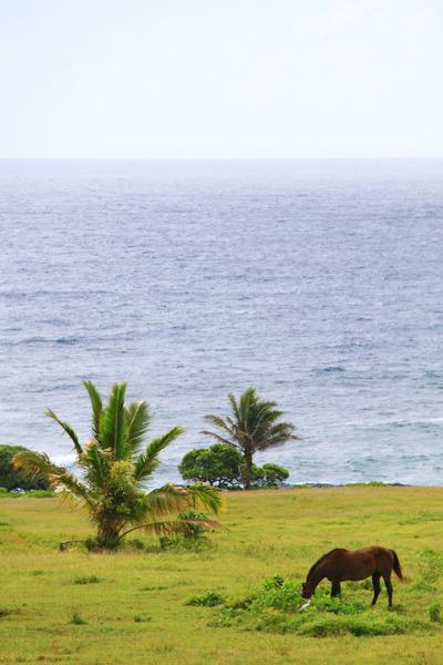 マウイ島ハナの丘の上の十字架 2