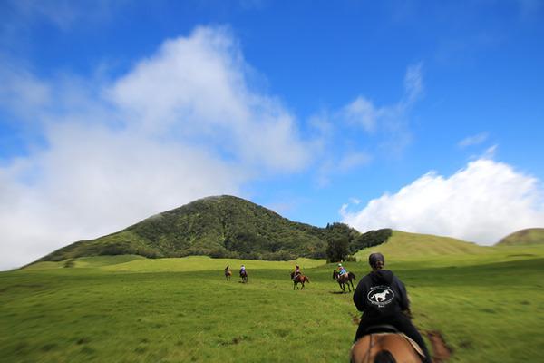 乗馬はやっぱりハワイ島がいい 7