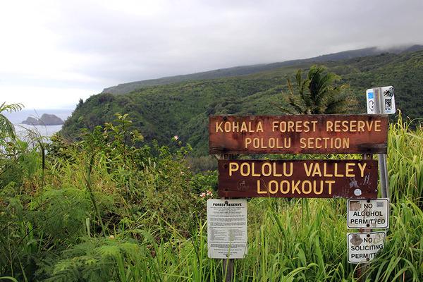 ハワイ島ポロル渓谷トレイル 1