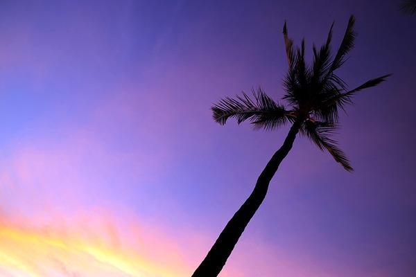 ハワイ ワイコロア サンセット 10