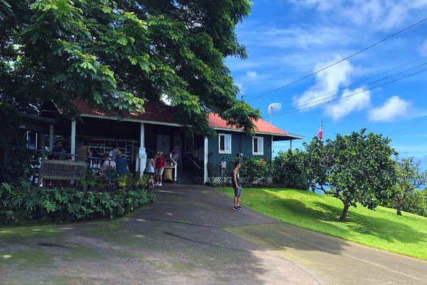 コナ 一番古い コーヒー農園 1