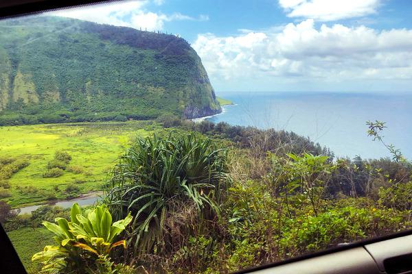 乗馬はやっぱりハワイ島がいい 1