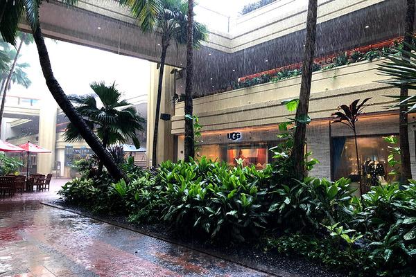 ハイアットのローカルモーションで雨宿り 1