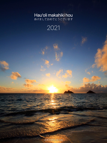 2021 a happy new year from hawaii 1