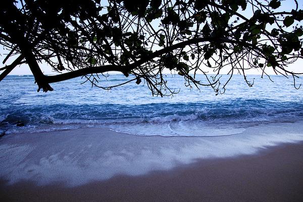 夏ハワイオアフワイキキ朝散歩カヴェへヴェへ  9