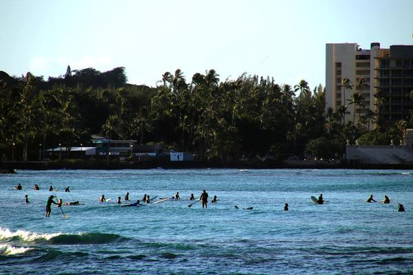 朝のワイキキビーチ散歩 ウォーキング ヨガ ワンコ 10