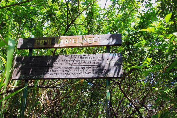ハワイカネオヘ ピルボックストレイル 4
