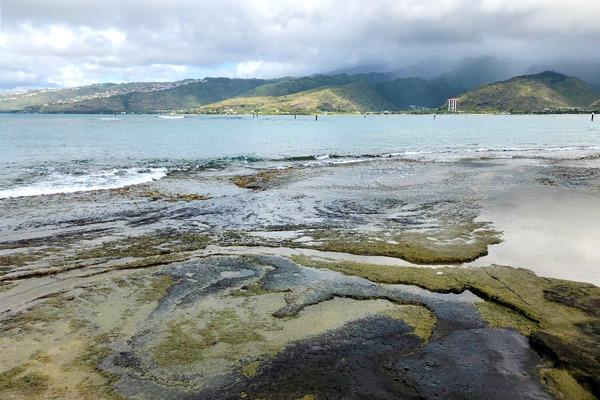ハワイオアフ島ポートロックの秘密のベンチ 3