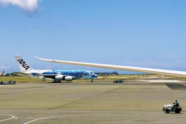 JAL ANAハワイ線運休情報7月31日まで運休 3