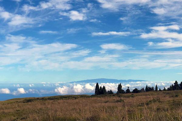 ハワイ島は世界三大パワースポット 5