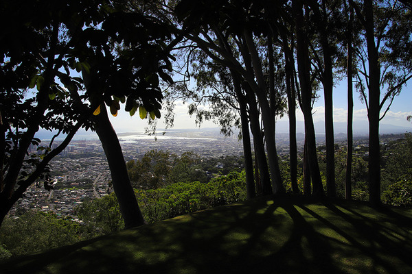ハワイ オシポフの建築リジェストランド邸 15