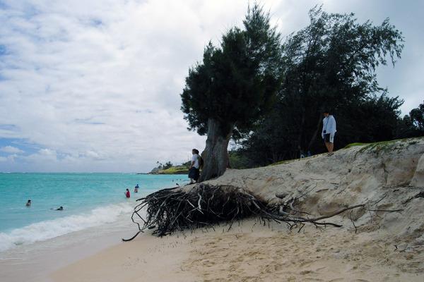 2050年ハワイのビーチが無くなる危機