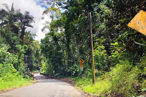 ハワイ ヒロ 穴場 トレイル 1