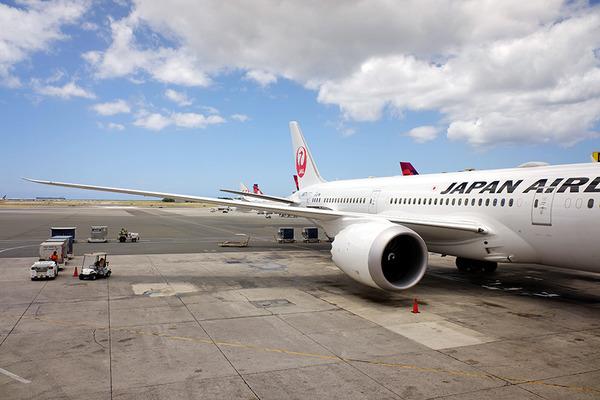 JAL帰国便2019夏 2