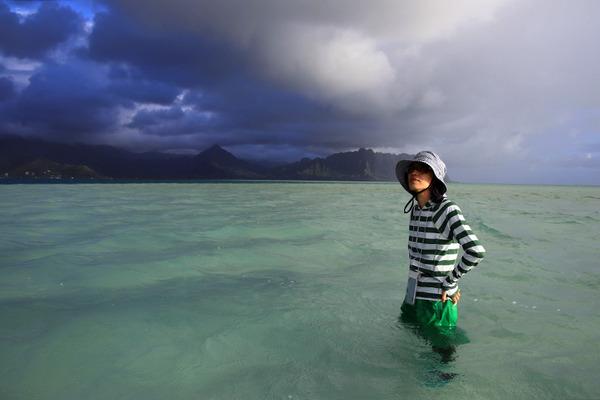 天国の海カネオヘサンドバー10年の水位 2017