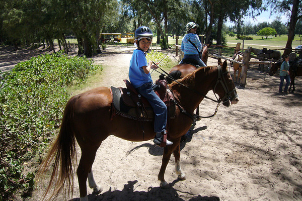 ハワイで乗馬はマストです 1