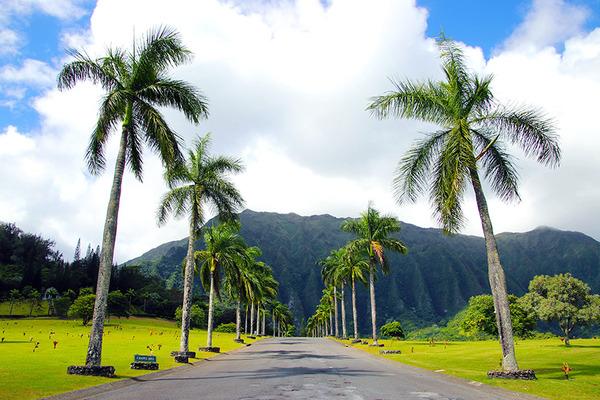 カネオヘウインドワード ハワイの平等院 3