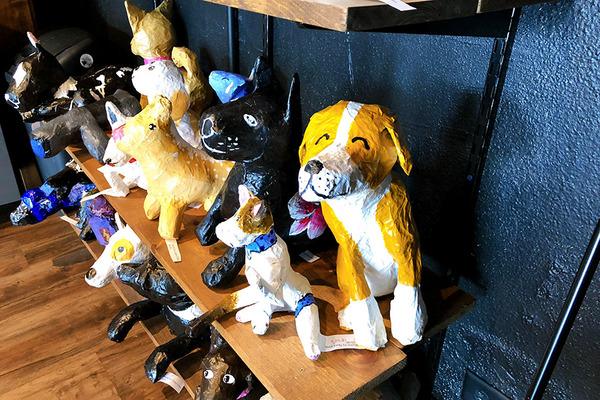 カイムキのおしゃれペットショップと猫カフェ 3