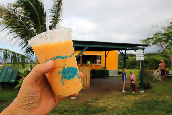 ハワイ フレッシュアイスクリーム ポロル 7