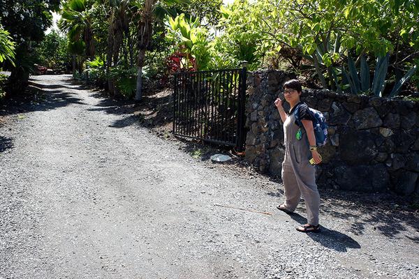 ハワイ産バニラ農園コナ空港近く 1
