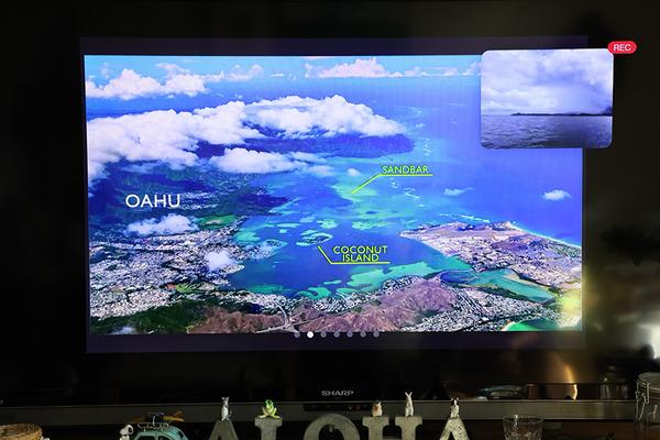 天国の海サンドバー ツアーでウミガメと遭遇 4