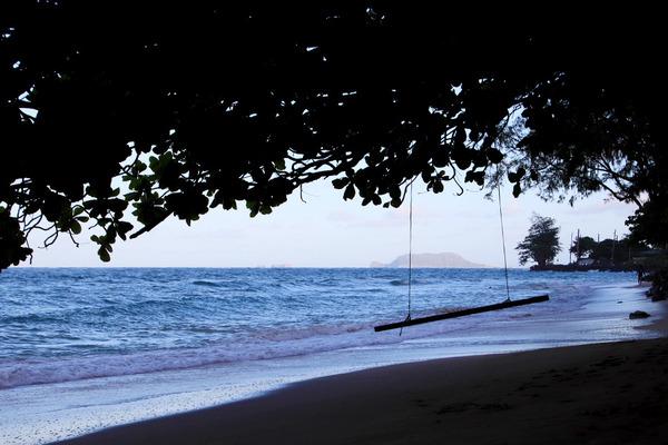 オアフ東海岸ビーチのブランコ 6