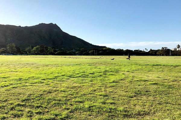 カピオラニ公園早朝散歩ワイキキビーチ 8