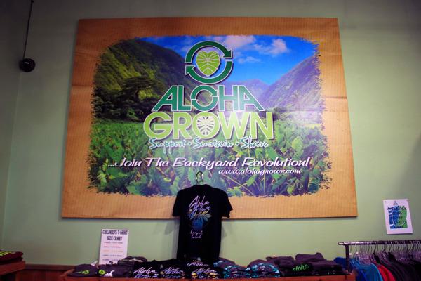 ハワイ ヒロ 人気のTシャツ アロハグロウン 7