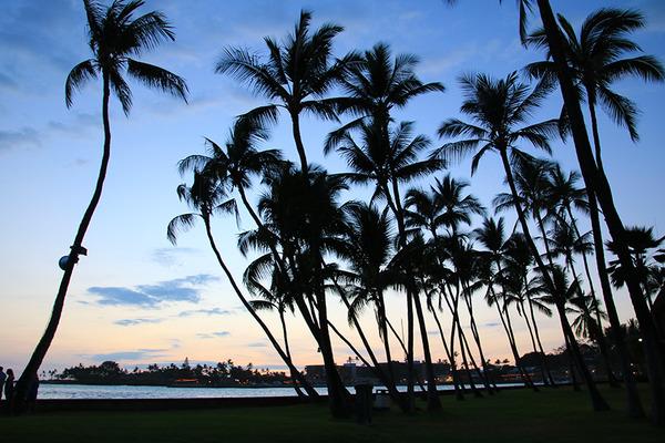 ハワイ島コナの最高サンセットレストランコナイン 6