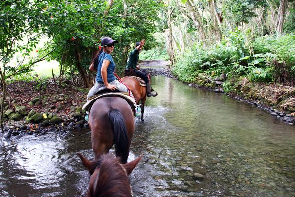 乗馬はやっぱりハワイ島がいい 3