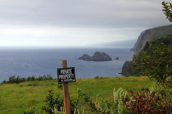ハワイ島ポロル渓谷トレイル 3