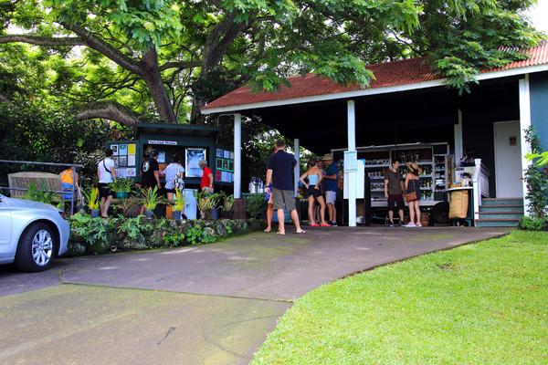 ハワイ グリーンウェルファーム おいしいコナコーヒー 1