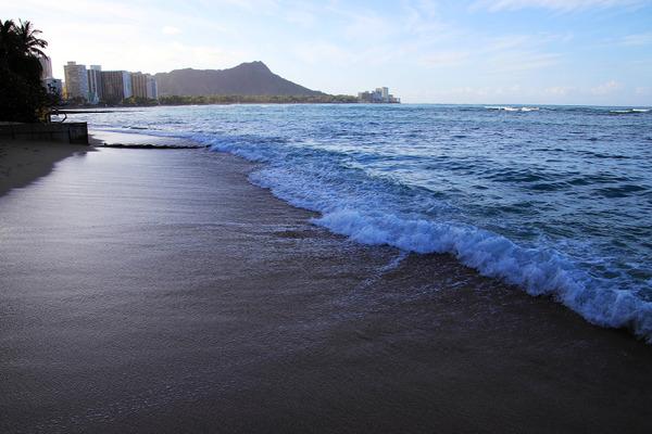 朝のワイキキビーチ散歩 ウォーキング ヨガ ワンコ 9