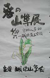 春の山草展