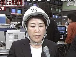 フジヘルメット
