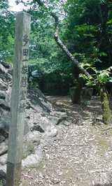 十河存保の墓4