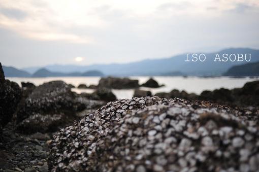 isoasobi