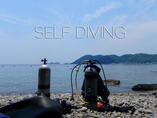 selfdive