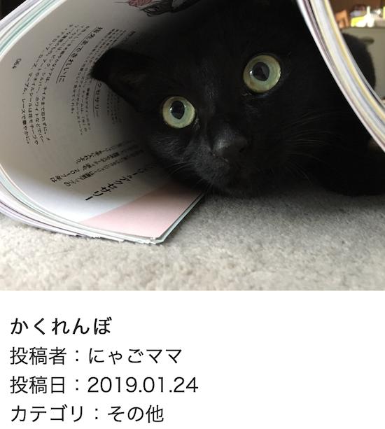 スクリーンショット 2019-01-25 14.35.38
