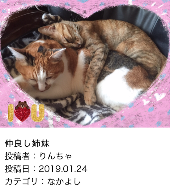 スクリーンショット 2019-01-25 14.36.00