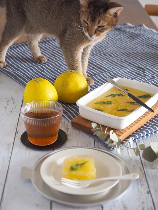 柑橘とハーブの寒天寄せ(完成)ちび子
