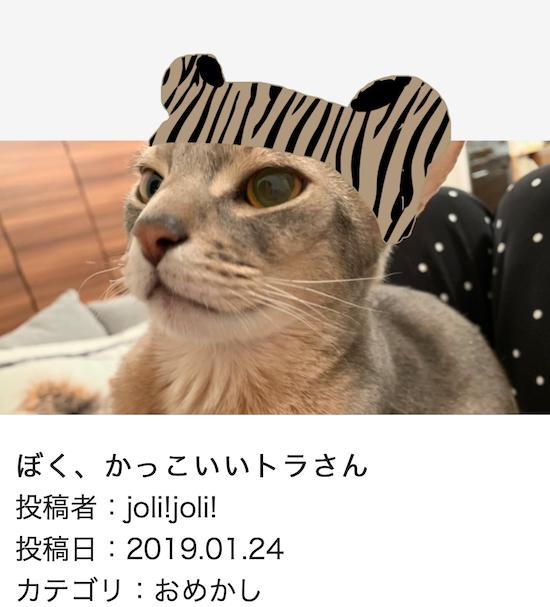スクリーンショット 2019-01-25 14.34.55