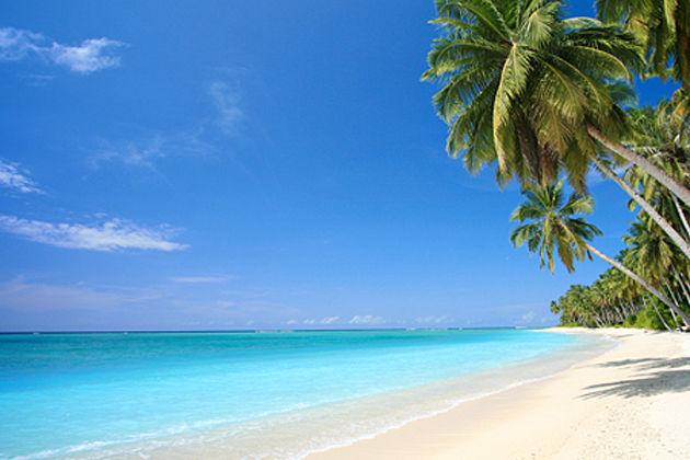 ハワイ諸島/温かく穏やかな気候に、青くキレイな海が広がり、日本語の看板やなじみの店があることなどから、学生やOL、英語が苦手な人にも人気のリゾート地