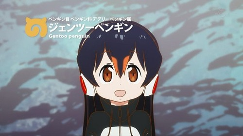 けものフレンズのペンギン