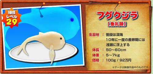 フグクジラ