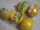 レモン (2)