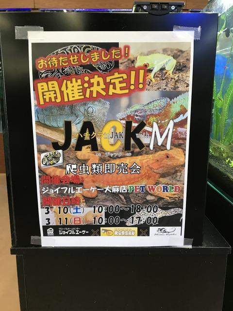 爬虫類飼いの北海道民あつまるべ