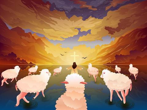 jesus&sheep