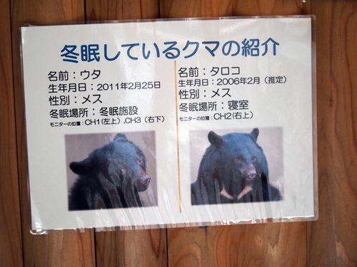 ueno-014