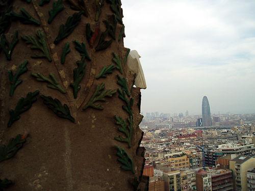 barcelona003